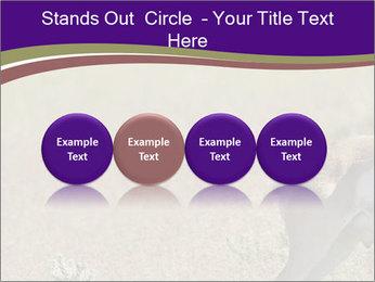 0000073387 PowerPoint Templates - Slide 76