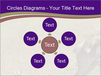 0000073387 PowerPoint Templates - Slide 78