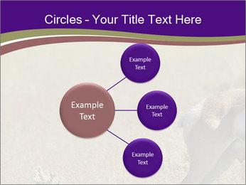 0000073387 PowerPoint Templates - Slide 79