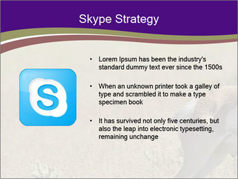 0000073387 PowerPoint Template - Slide 8