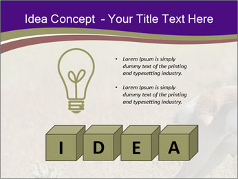 0000073387 PowerPoint Templates - Slide 80