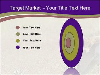 0000073387 PowerPoint Templates - Slide 84