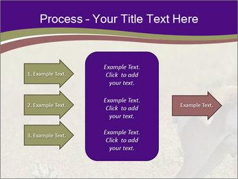 0000073387 PowerPoint Templates - Slide 85