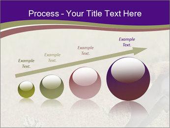 0000073387 PowerPoint Templates - Slide 87
