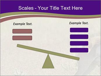 0000073387 PowerPoint Templates - Slide 89