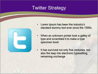 0000073387 PowerPoint Templates - Slide 9