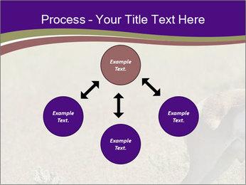 0000073387 PowerPoint Templates - Slide 91