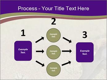 0000073387 PowerPoint Templates - Slide 92