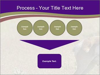 0000073387 PowerPoint Templates - Slide 93