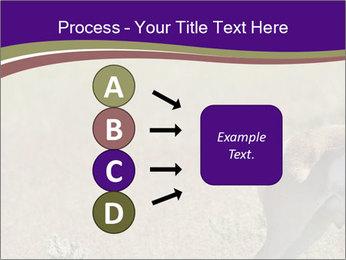 0000073387 PowerPoint Templates - Slide 94
