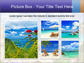 0000073388 PowerPoint Template - Slide 19