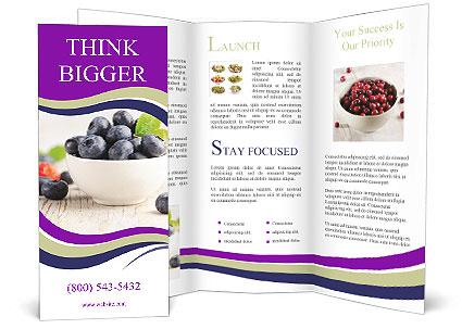 0000073395 Brochure Template