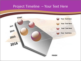 0000073396 PowerPoint Templates - Slide 26