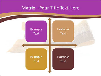 0000073396 PowerPoint Templates - Slide 37