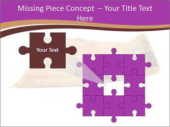 0000073396 PowerPoint Templates - Slide 45