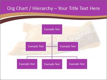0000073396 PowerPoint Templates - Slide 66