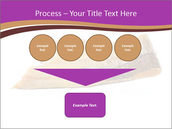 0000073396 PowerPoint Templates - Slide 93