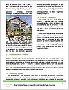 0000073398 Word Templates - Page 4