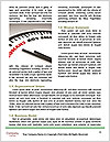 0000073405 Word Template - Page 4