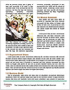 0000073406 Word Templates - Page 4