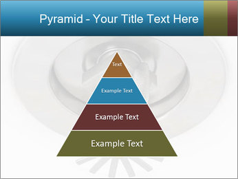 0000073414 PowerPoint Templates - Slide 30