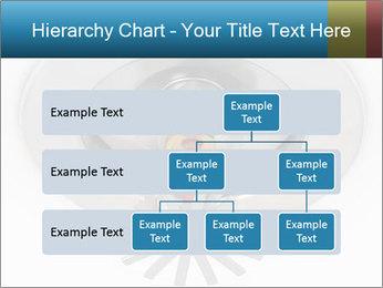 0000073414 PowerPoint Templates - Slide 67