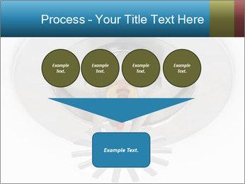 0000073414 PowerPoint Templates - Slide 93