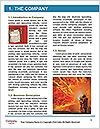 0000073414 Word Template - Page 3