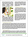 0000073417 Word Templates - Page 4
