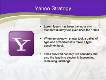 0000073419 PowerPoint Templates - Slide 11
