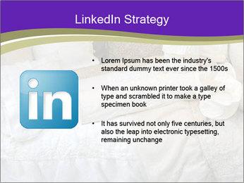 0000073419 PowerPoint Templates - Slide 12