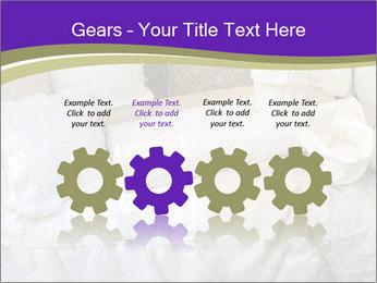 0000073419 PowerPoint Templates - Slide 48