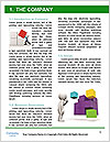 0000073423 Word Template - Page 3