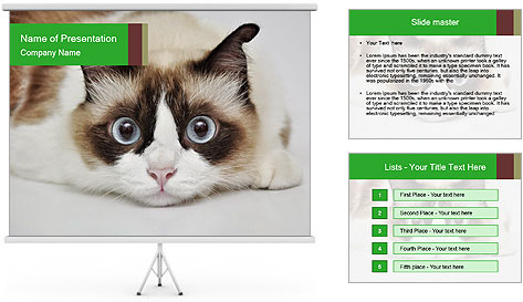 0000073428 PowerPoint Template
