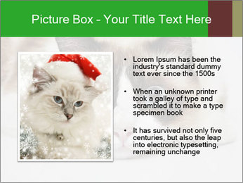 0000073428 PowerPoint Template - Slide 13