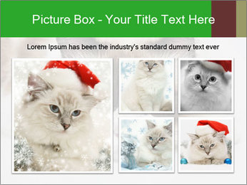 0000073428 PowerPoint Template - Slide 19