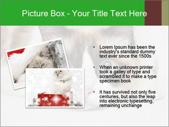 0000073428 PowerPoint Template - Slide 20