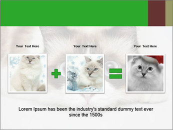 0000073428 PowerPoint Template - Slide 22