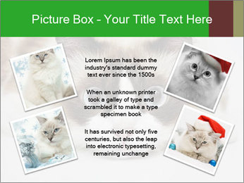 0000073428 PowerPoint Template - Slide 24