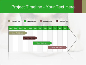 0000073428 PowerPoint Template - Slide 25