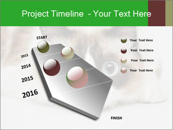 0000073428 PowerPoint Template - Slide 26
