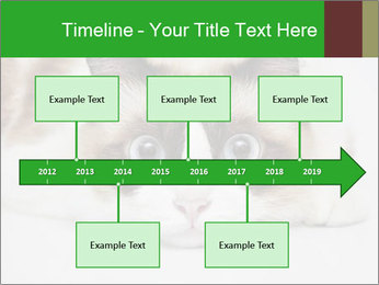 0000073428 PowerPoint Template - Slide 28