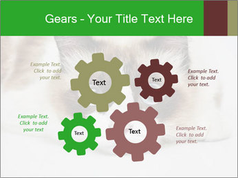 0000073428 PowerPoint Template - Slide 47