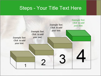 0000073428 PowerPoint Template - Slide 64