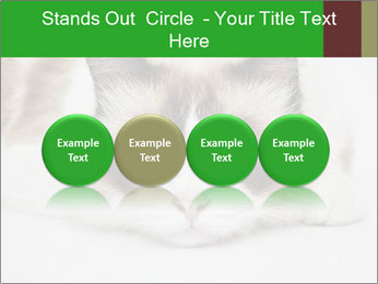 0000073428 PowerPoint Template - Slide 76