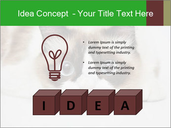 0000073428 PowerPoint Template - Slide 80