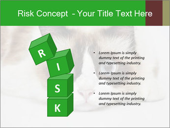 0000073428 PowerPoint Template - Slide 81