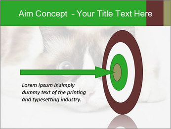 0000073428 PowerPoint Template - Slide 83