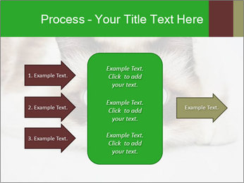 0000073428 PowerPoint Template - Slide 85