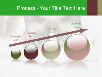 0000073428 PowerPoint Template - Slide 87